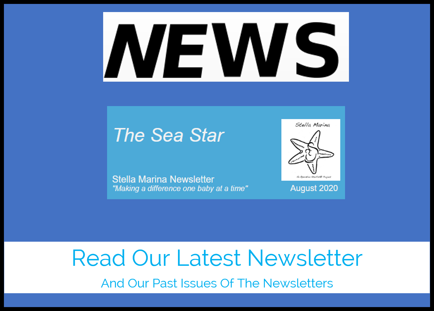 Newsletter Main